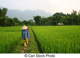 vietnam-stock-images_csp2878205.jpg
